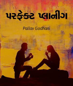 પરફેક્ટ પ્લાનીંગ By Pallav Godhani
